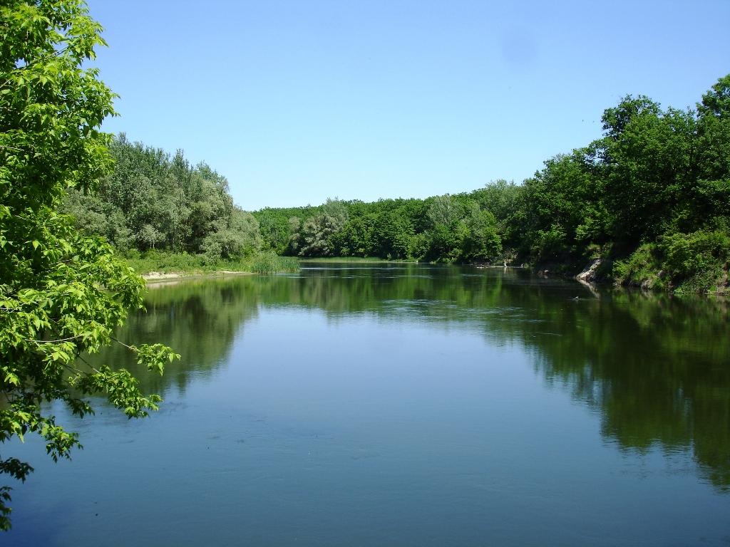 В реке обнаружили череп, который пролежал в воде три месяца